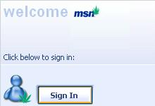 MSN skin screenshot